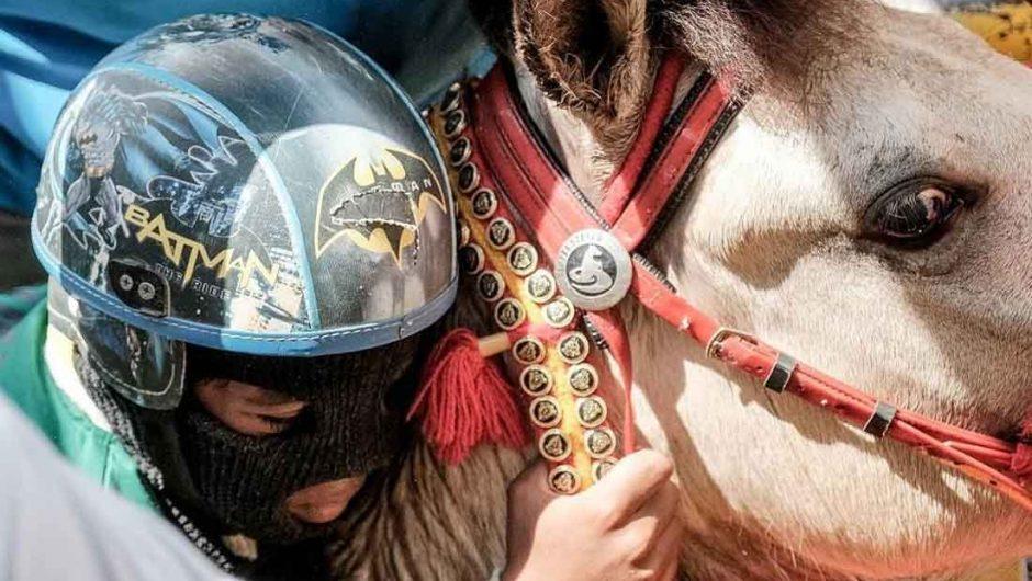 Menparekraf Dukung Pacuan Kuda Bima Jadi Event Nasional