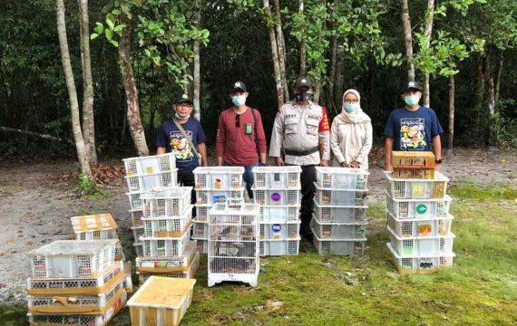 BKSDA Kalimantan Tengah Gagalkan Pengiriman Ribuan Burung Illegal